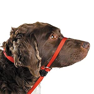 Premier-Pet-Products Gentle Leader Headcollar, Large, Red