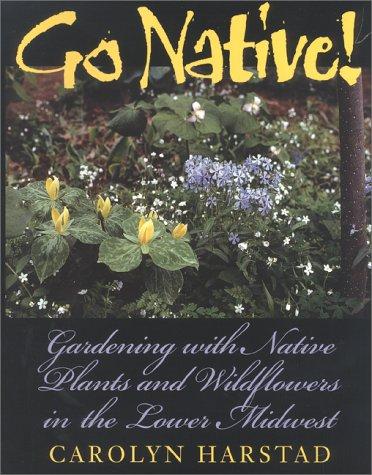 companion essay northwoods outdoor reflection spring summer