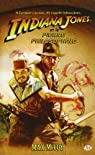 Indiana Jones, Tome 9 : La pierre philosophale par McCoy
