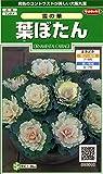 サカタのタネ 実咲花6919 葉ぼたん 雪の華 00906919
