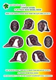 Canada Goose: Flat-pack Head Model Book