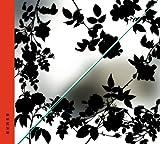 紫陽花/螺旋階段