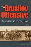 The Brusilov Offensive (Twentieth-Century Battles)