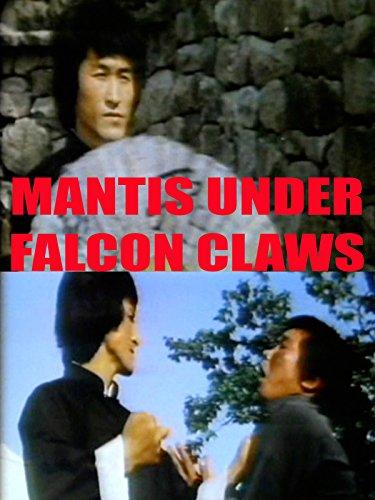 Mantis Under Falcon Claws