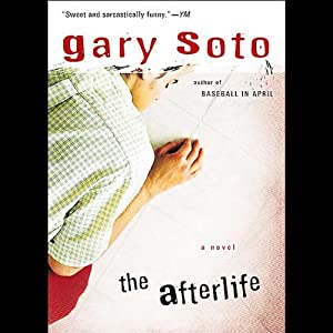 The Afterlife Audiobook