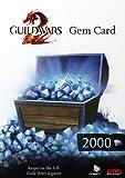 Carte prépayée 'Guild Wars 2' pour PC