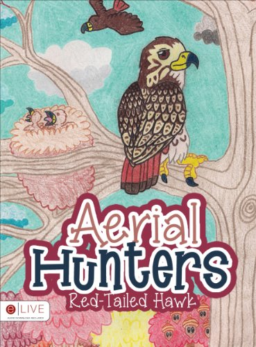 Aerial Hunters: Red-Tailed Hawk