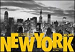 New York: 365 Days: From the Photo Ar...