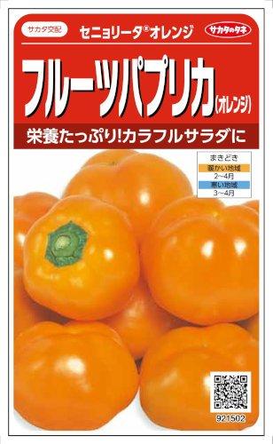 【種子】カラーピーマン セニョリータオレンジ 約11粒