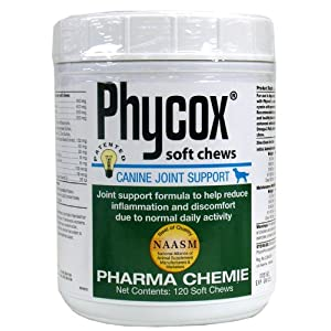 51ERiuXkr5L. SL500 AA300  PhyCox Soft Chews (120 ct)