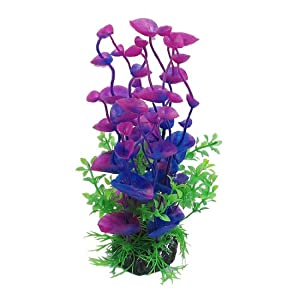 Jardin Landscaping Water Plant Decoration for Aquarium, 8.3-Inch, Purple/Green