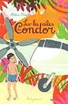 Sur les ailes du condor