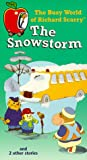 echange, troc Snowstorm [VHS] [Import USA]