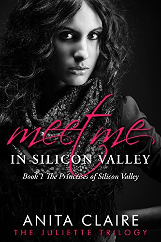 Meet Me in Silicon Valley by Anita Claire