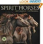 Spirit Horses 2016 Wall Calendar