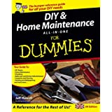 DIY and Home Maintenance for Dummies All-in-One, UK editionby Jeff Howell