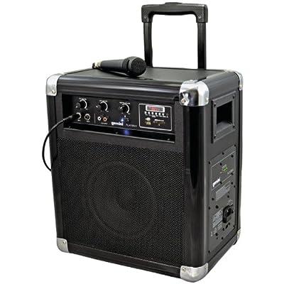 Gemini DJ PLAY2GO Powered Speaker Cabinet