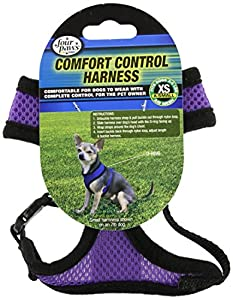 Comfort Control Harness, X-Small, Purple