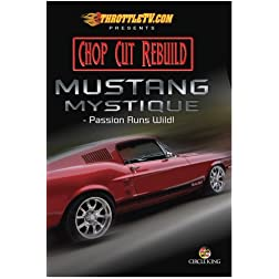 Mustang Mystique - Passion Runs Wild!
