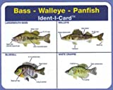 Bass - Walleye - Panfish Ident-I-Card - Freshwater Fish Identification Card