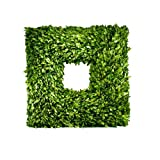 Preserved Boxwood Wreath Square 22