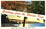 Florida Keys, Florida Postcard