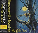 Iron Maiden Fear Of The Dark