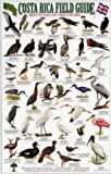 Birds of the Pacific Coast Tropical Rainforest Carara, Manuel Antonio, Osa Peninsula (Costa Rica Field Guides) (1888538066) by Dean, Robert