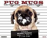 Pug Mugs 2015 Wall Calendar