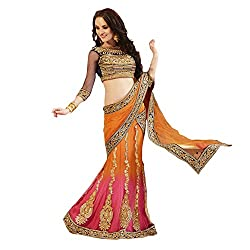 Orange Net With embroidery pattern on navy dhupion blouse.