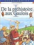 L'Histoire de France , tome 1 : De la préhistoire aux gaulois