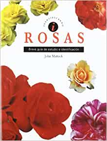 ROSAS: John Mattock: 9788489675544: Amazon.com: Books