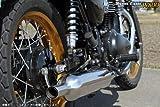 アールズギア(r's gear) フルエキゾーストマフラー ワイバンクラシック ツイン ステンレス W800 WK20-02CT