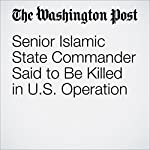Senior Islamic State Commander Said to Be Killed in U.S. Operation | Joby Warrick,Thomas Gibbons-Neff,Greg Miller