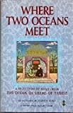 Where Two Oceans Meet: A Selection of Odes from the Divan of Shems of Tabriz (1852303301) by Mevlana Jalaluddin Rumi