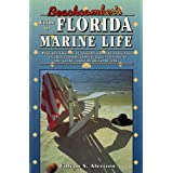 Beachcomber's Guide to Florida Marine Life