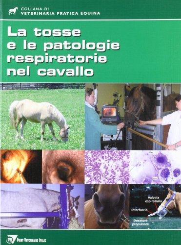 la-tosse-e-le-patologie-respiratorie-nel-cavallo