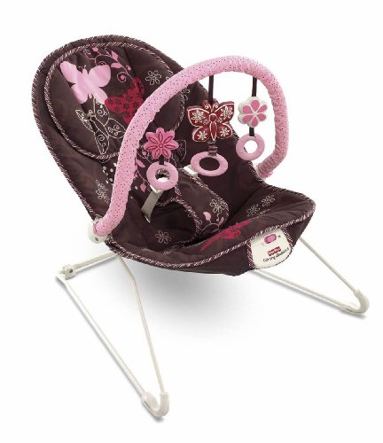 Find Bargain Fisher-Price Comfy Time Bouncer, Mocha Butterfly