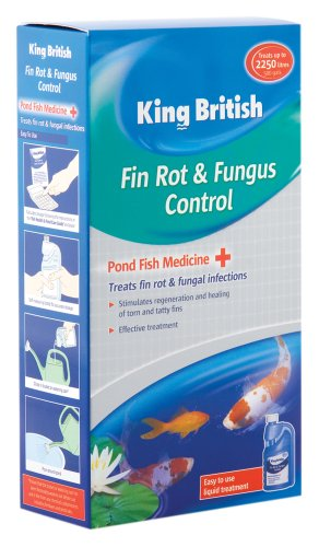 king-british-fin-rot-fungus-control-for-ponds-250ml
