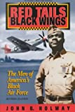 Red Tails Black Wings: The Men of America&#039;s Black Air Force