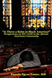 """Is there a Balm in Black America?"": Perspectives on HIV/AIDS in the African American Community"