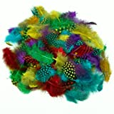 Large Pack Of Spotted Feathers Assorted Colours 28g
