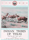 img - for Indian Tribes of Texas book / textbook / text book