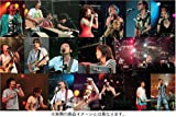 ap bank fes '05 [DVD]
