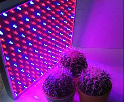 225 Led Light Hydroponic Plant Grow Light Panel Red / Blue Led Grow Light