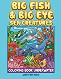 Big Fish and Big Eye Sea Creatures: Coloring Book Underwater