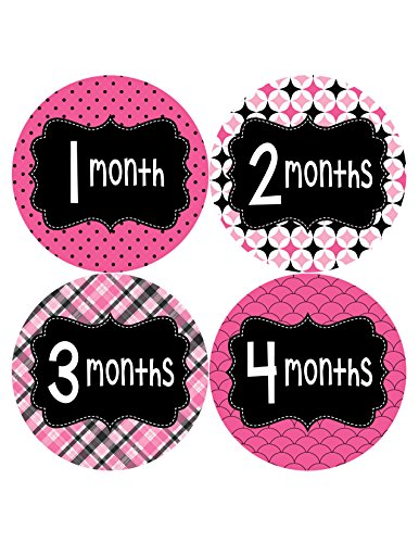 Months in Motion 401 Monthly Baby Stickers Month Girl Monthly Photo Milestone
