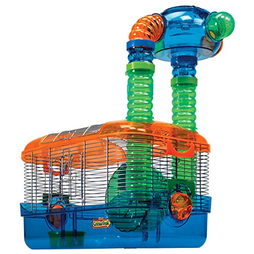 Kaytee Critter Trail Triple Play 3 in One Habitat for Hamsters 51EaHu0riwL