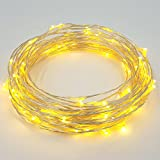 XYZER Dimmable LED String Lights Silver Wire 33ft 100 individual LEDs Starry Light with CE &FCC Certified 12V Power Adapter - Warm White - Remote controller - for Holiday Christmas Wedding Party and Home Decoration