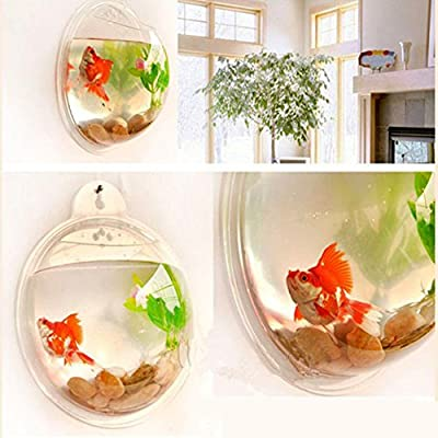 Moya Wall Hanging Potted Flower Vase Aquarium Goldfish Creative Acrylic Organic Glass Wall